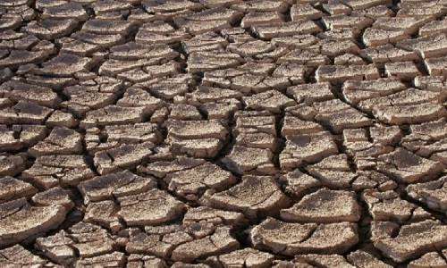 Drought-Declared-In-Maharastra