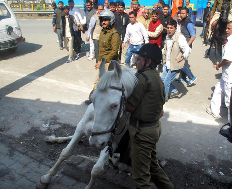 Horse Brutally Beaten By BJP MLA in Dehradun