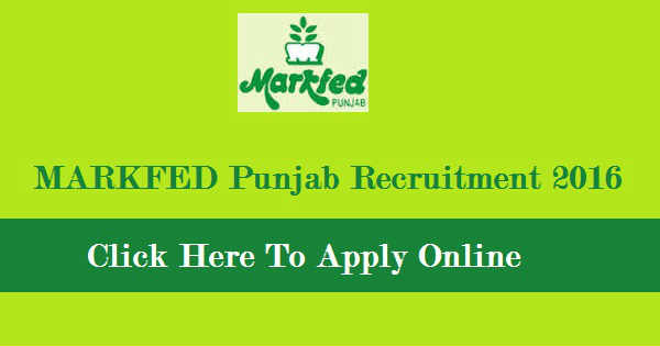 MARKFED Punjab Recruitment 2016