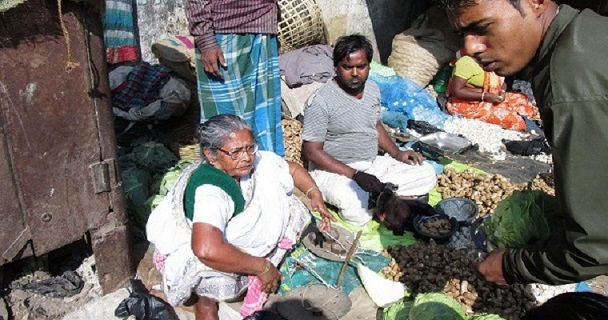 vegetable-seller-Subhasini-mistry-pic