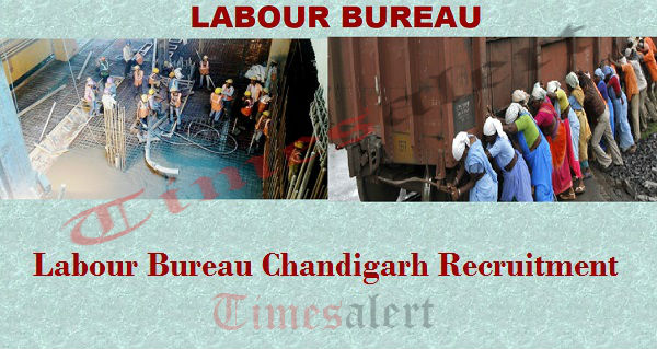 Labour Bureau Chandigarh Recruitment