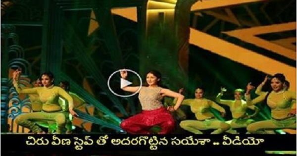 Sayesha Saigal Chiru Veena Step Dance