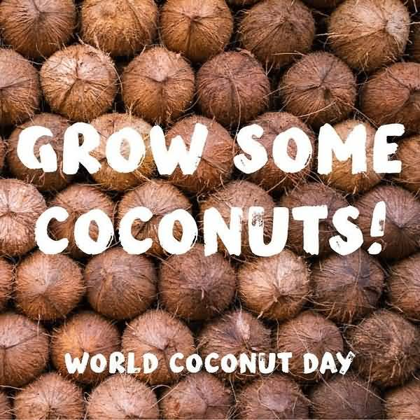 Happy World Coconut Day Wallpapers
