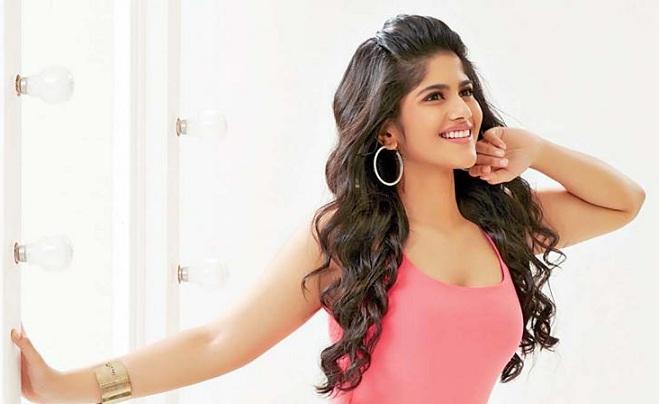 Megha Akash Affairs Boyfriend