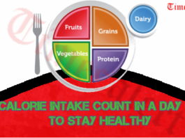 Calorie Intake Count In A Day to Stay Healthy