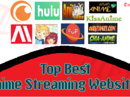 Best Anime Streaming Websites
