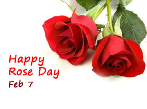 Happy Rose Day whatsapp images