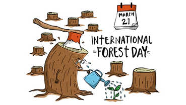 International Day Of Forest Images
