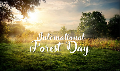 International Day Of Forest Theme