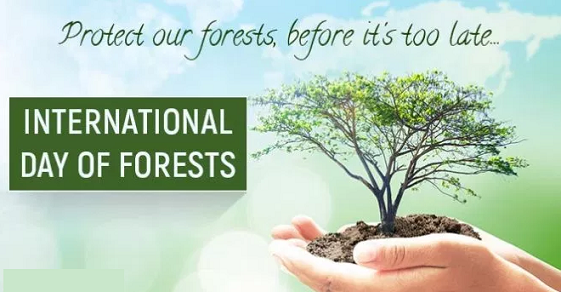 World Forest Day Images