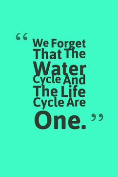 World Water Day WhatsApp Status