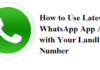 WhatsApp App With Landline Number