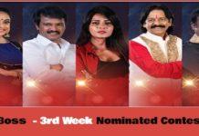 Bigg Boss 3 Vote - 3rd Week Nominated Contestants