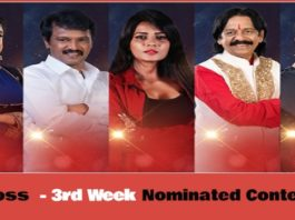 Bigg Boss 3 Vote - 3rd Week Nominated Contestants