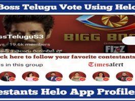 Bigg Boss Telugu Contestants Helo Profiles