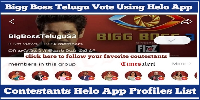 Best Bigg Boss 3 Telugu Contestants Details - Bella Esa