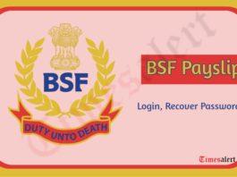 BSF GPF Payslip