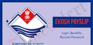 Ekosh Pay Slip