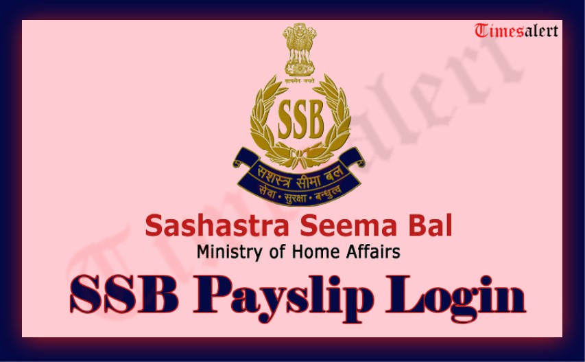 SSB Pays Slip