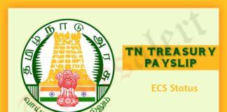 TN Treasury Payslip