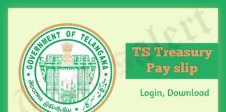 TS Treasury Payslip